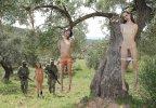 Hanging tree2.jpg
